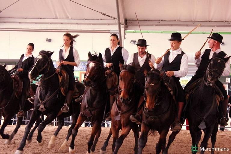 Il progetto è stato presentato alla Fiera Cavallo di Verona